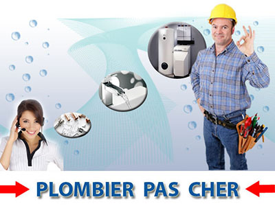 Debouchage wc Chessy 77700